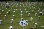 Cemiterio DF Finados 190