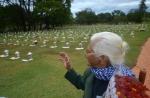 Cemiterio DF Finados 191