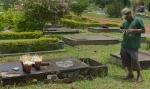 Cemiterio DF Finados 192