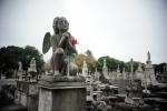 Cemiterio RJ Finados 158