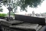 Cemiterio RJ Finados 160