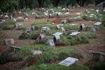 Cemiterio SP Finados 168