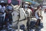 AgenciaBrasil071012IMG 5685