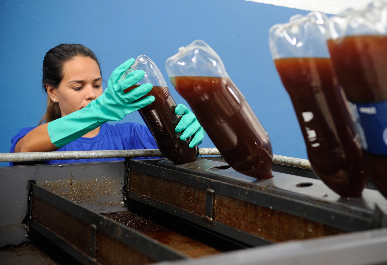 #297898 Projeto quer reciclar 25 milhões de litros de óleo de cozinha até a  3000x2052 px Projeto Cozinha Comunitária Governo Federal_4147 Imagens