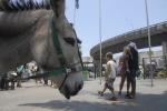 AgenciaBrasil20121212 0160