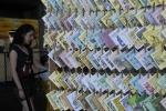 AgenciaBrasil20121212 0163