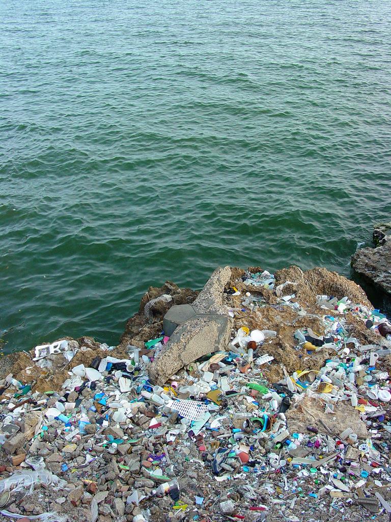 Plástico: um grande responsável pela poluição marinha