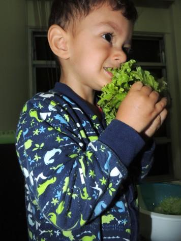 Dudu comendo alface