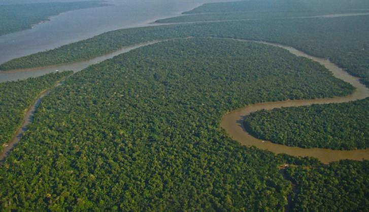 Imagem - Inpe lança sistema para estimar emissões na Amazônia