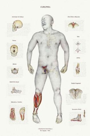 Técnicas de anatomia são usadas para construir figura do Curupira